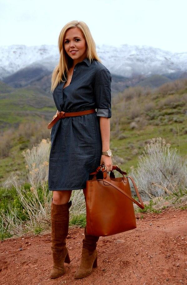 adrienna_papell_shirt_dress